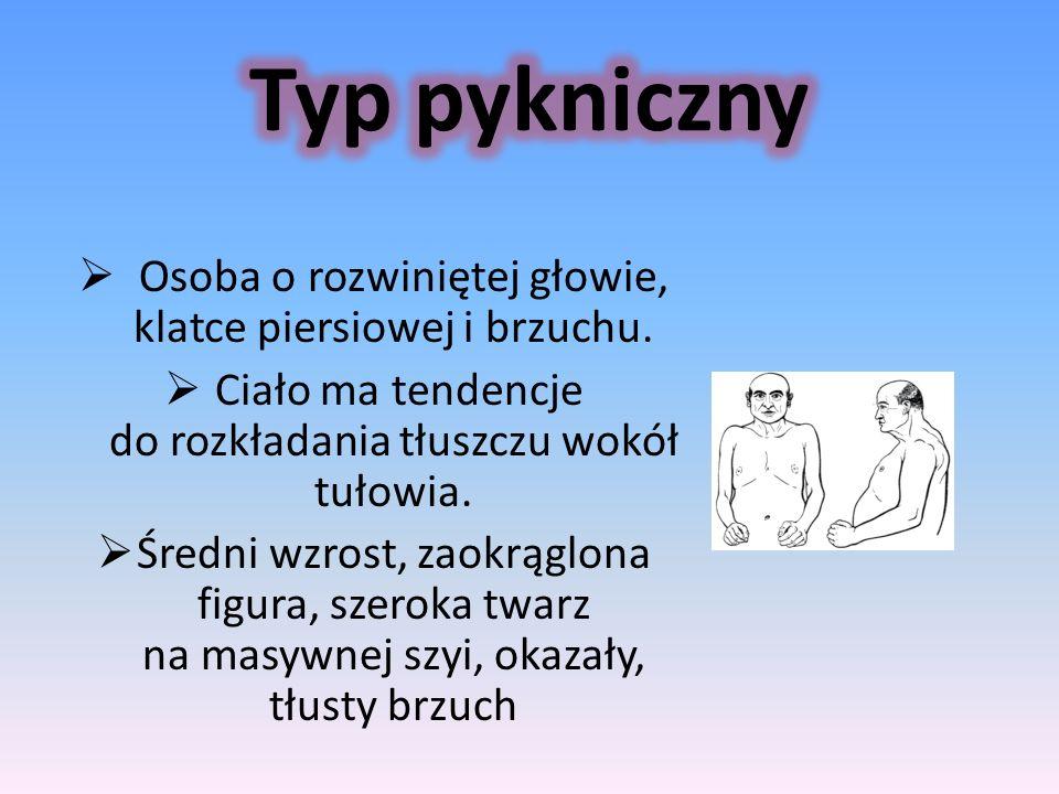 Typ pykniczny Osoba o rozwiniętej głowie, klatce piersiowej i brzuchu.