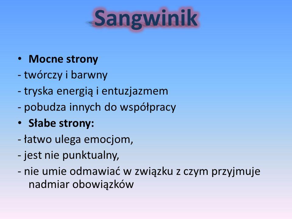 Sangwinik Mocne strony - twórczy i barwny