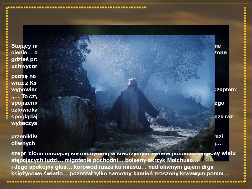 Stojący na granacie nieba Księżyc w pełni… tańczące wśród drzew niewyraźne cienie… cichy szept… oparta o kamień sylwetka pochylonej postaci… wpatrzone gdzieś przed siebie mądre, szczere oczy… przesuwają się przed nimi obrazy uchwyconych w czasie chwil…