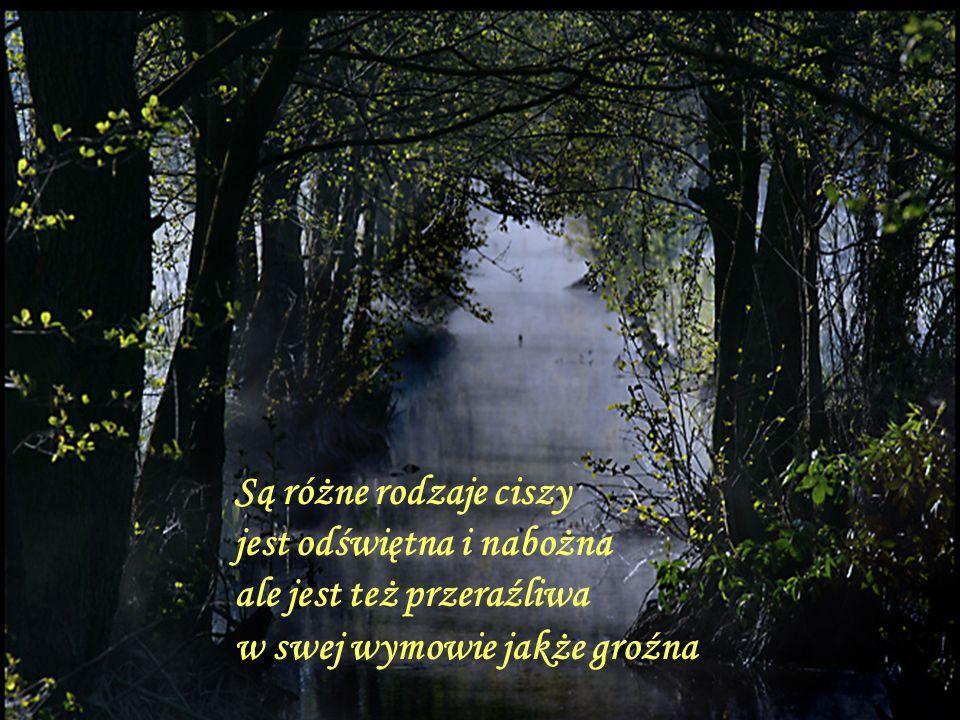 Są różne rodzaje ciszy jest odświętna i nabożna ale jest też przeraźliwa w swej wymowie jakże groźna