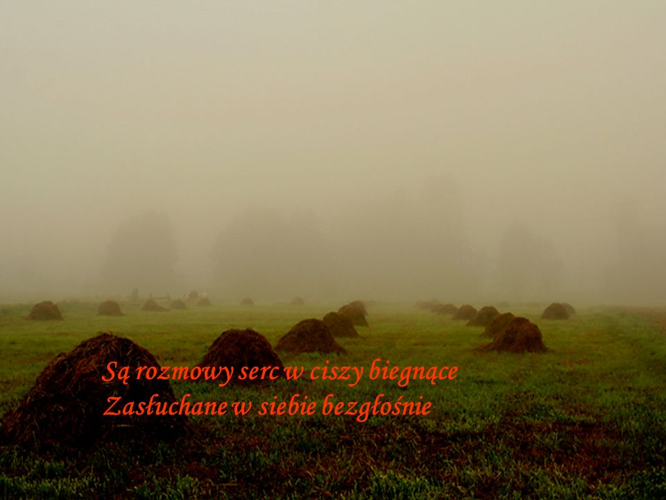 Są rozmowy serc w ciszy biegnące Zasłuchane w siebie bezgłośnie