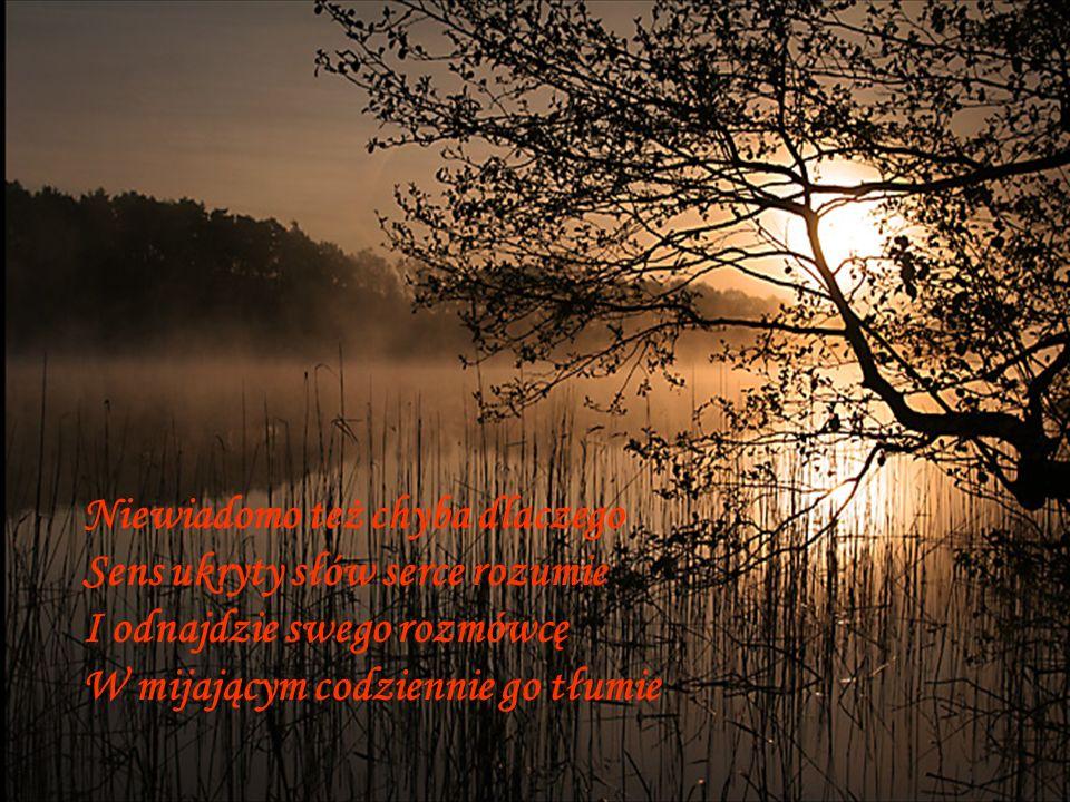 Niewiadomo też chyba dlaczego Sens ukryty słów serce rozumie I odnajdzie swego rozmówcę W mijającym codziennie go tłumie