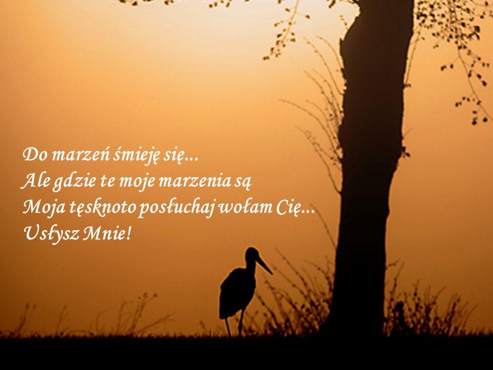 Do marzeń śmieję się... Ale gdzie te moje marzenia są Moja tęsknoto posłuchaj wołam Cię...