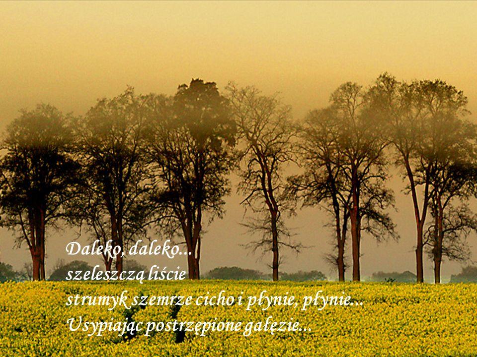 Daleko, daleko... szeleszczą liście strumyk szemrze cicho i płynie, płynie...