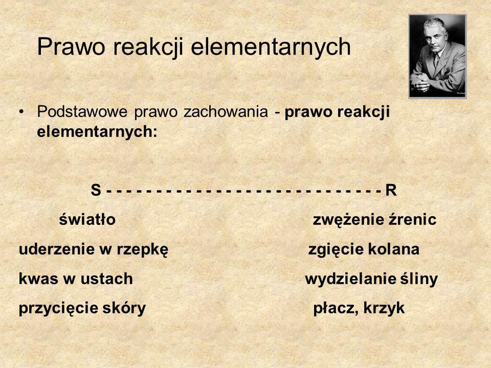 Prawo reakcji elementarnych