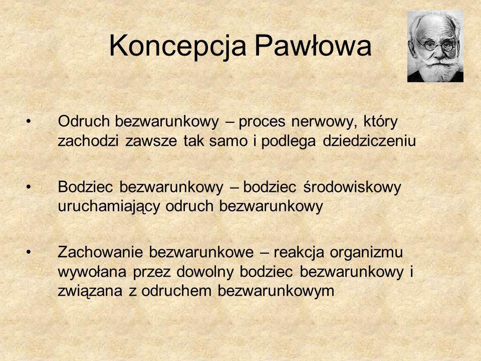 Koncepcja Pawłowa Odruch bezwarunkowy – proces nerwowy, który zachodzi zawsze tak samo i podlega dziedziczeniu.