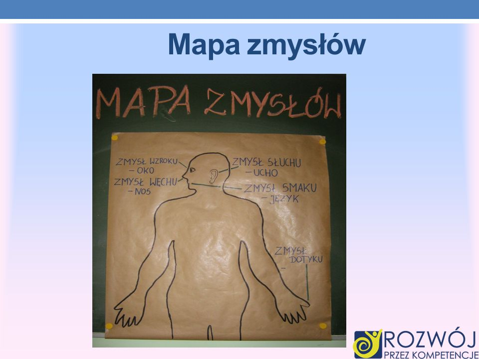 Mapa zmysłów