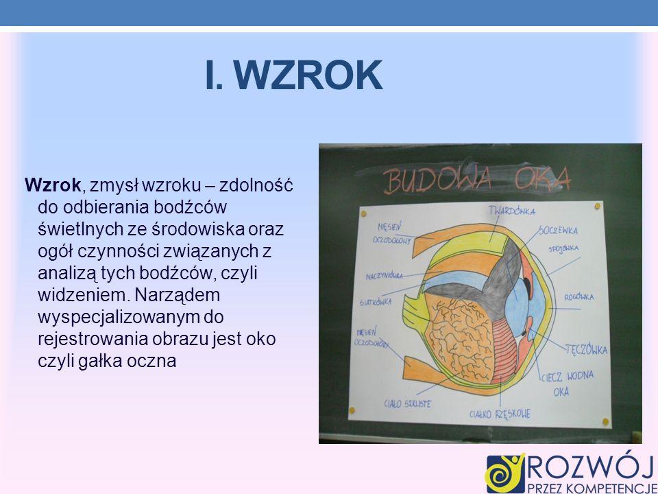 I. WZROK