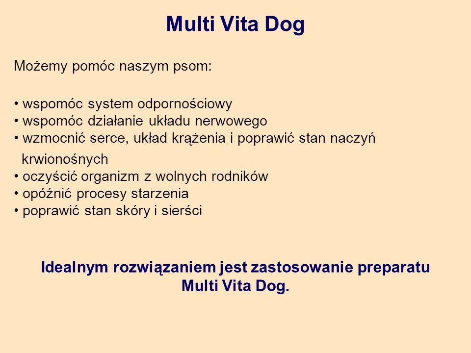 Idealnym rozwiązaniem jest zastosowanie preparatu Multi Vita Dog.