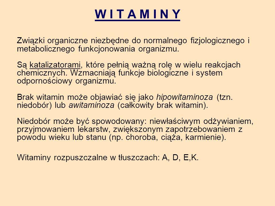W I T A M I N Y