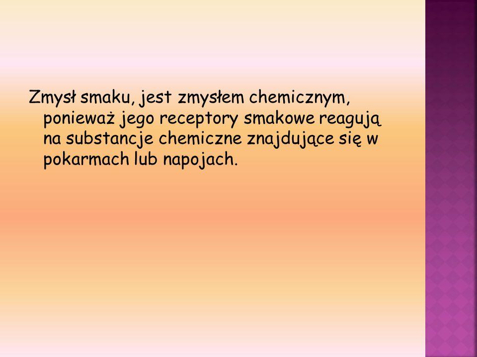 Zmysł smaku, jest zmysłem chemicznym, ponieważ jego receptory smakowe reagują na substancje chemiczne znajdujące się w pokarmach lub napojach.