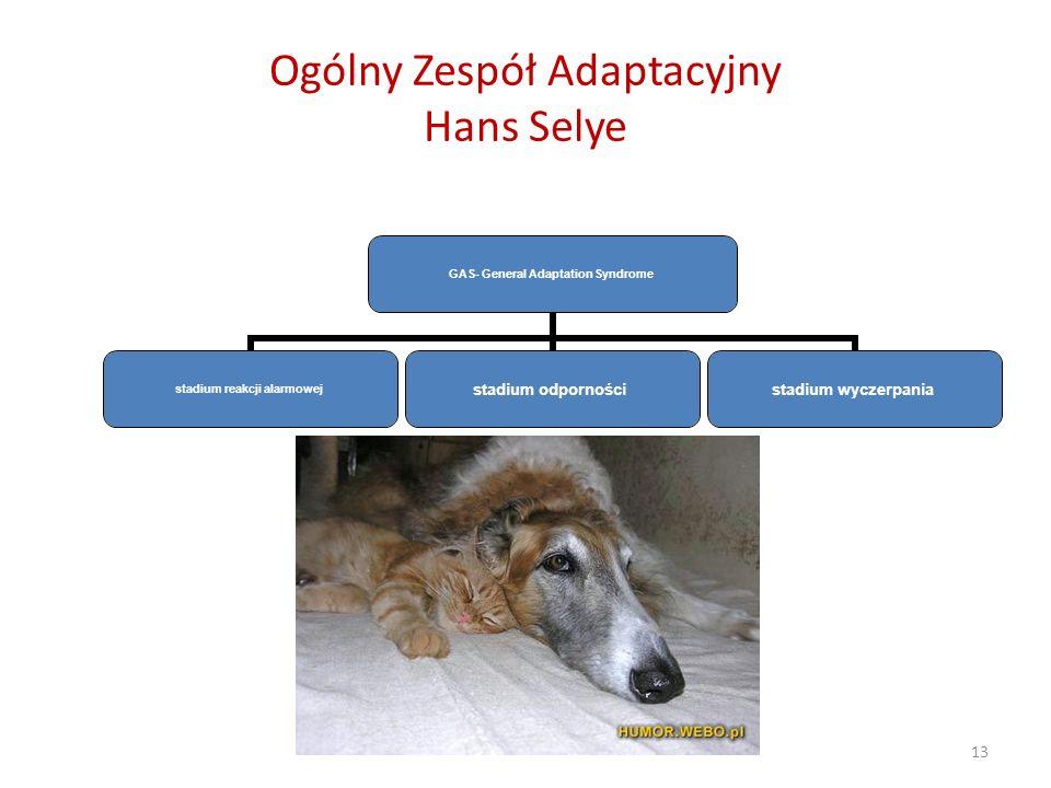 Ogólny Zespół Adaptacyjny Hans Selye