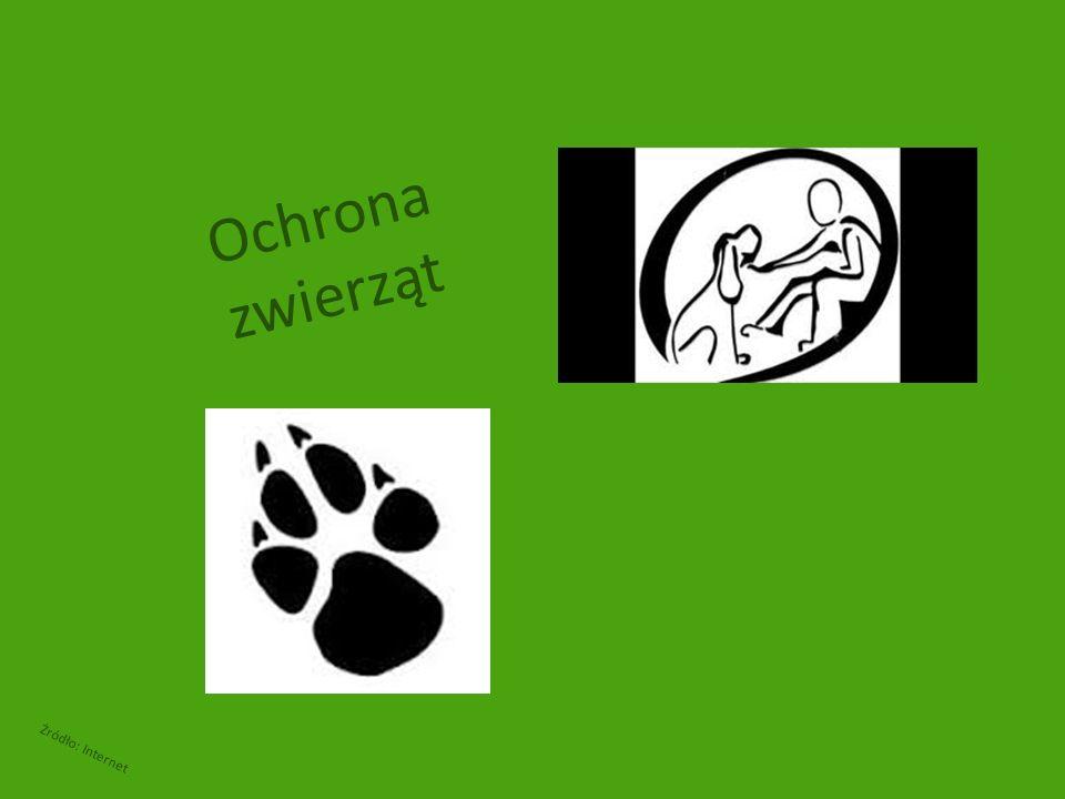 Ochrona zwierząt Żródło: Internet