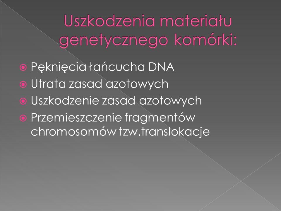 Uszkodzenia materiału genetycznego komórki: