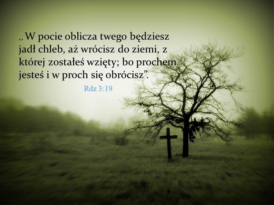 """""""W pocie oblicza twego będziesz jadł chleb, aż wrócisz do ziemi, z której zostałeś wzięty; bo prochem jesteś i w proch się obrócisz ."""