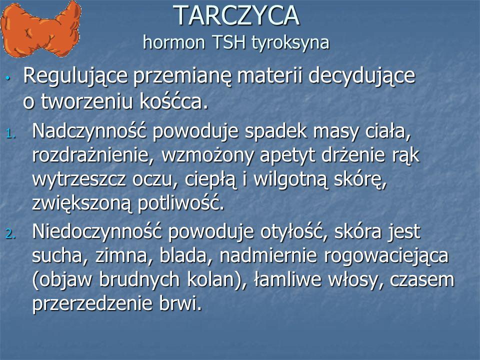 TARCZYCA hormon TSH tyroksyna
