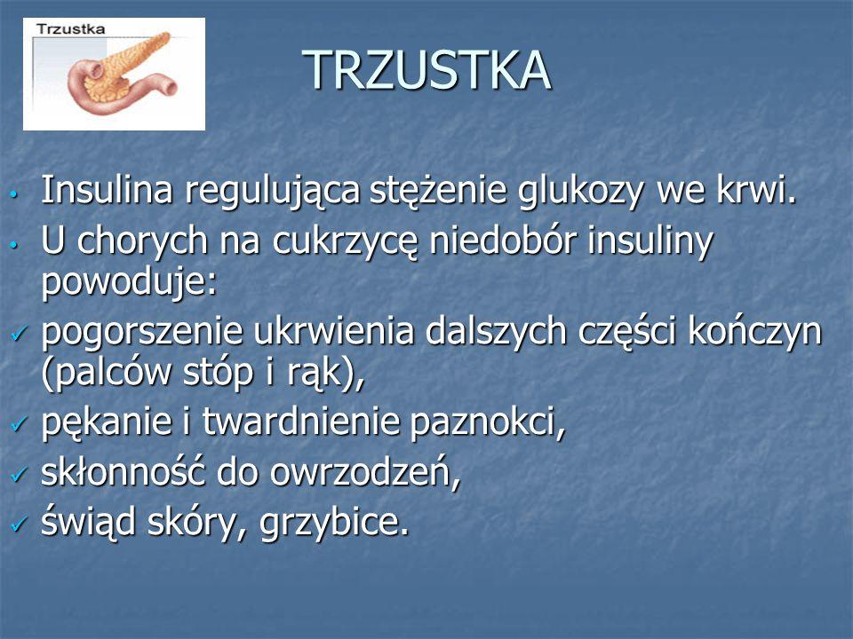 TRZUSTKA Insulina regulująca stężenie glukozy we krwi.