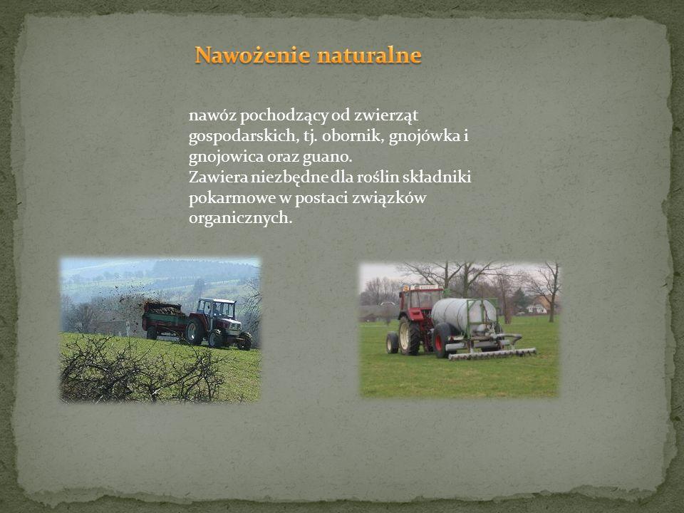 Nawożenie naturalne nawóz pochodzący od zwierząt gospodarskich, tj. obornik, gnojówka i gnojowica oraz guano.