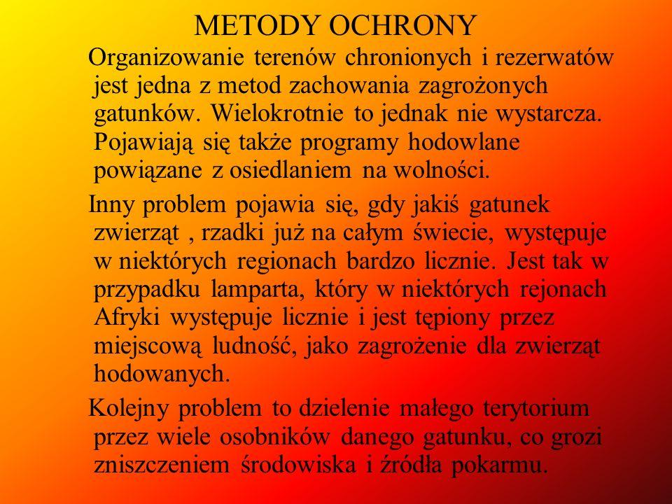METODY OCHRONY