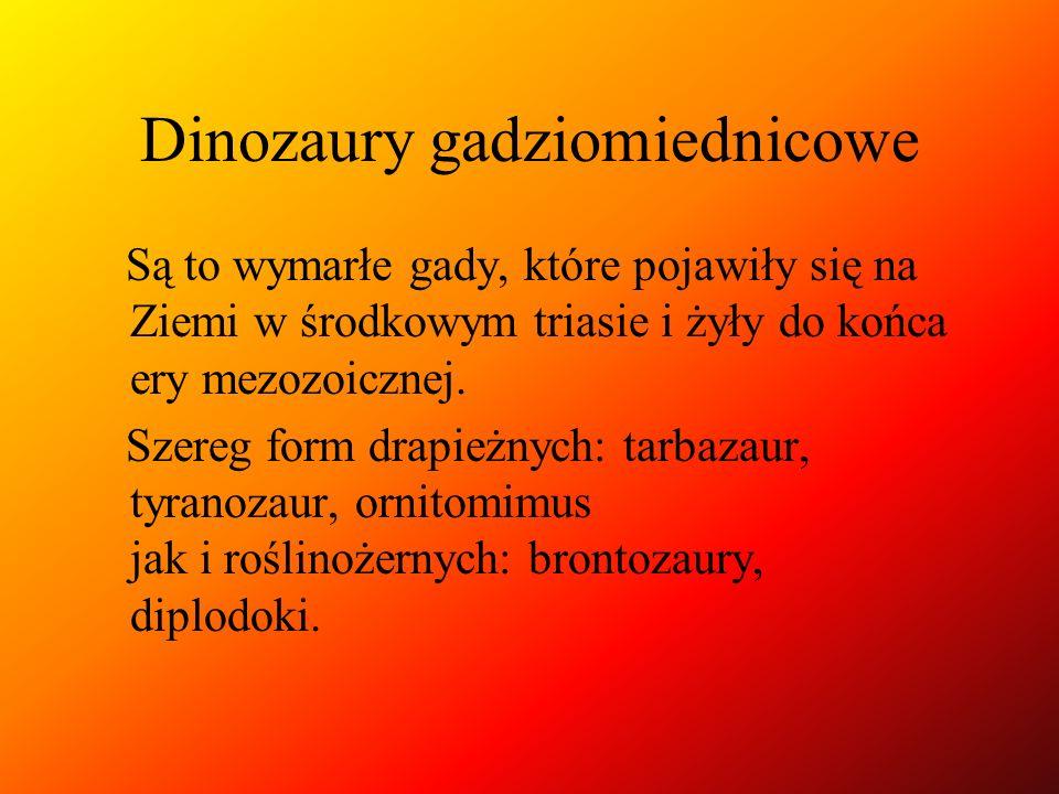 Dinozaury gadziomiednicowe