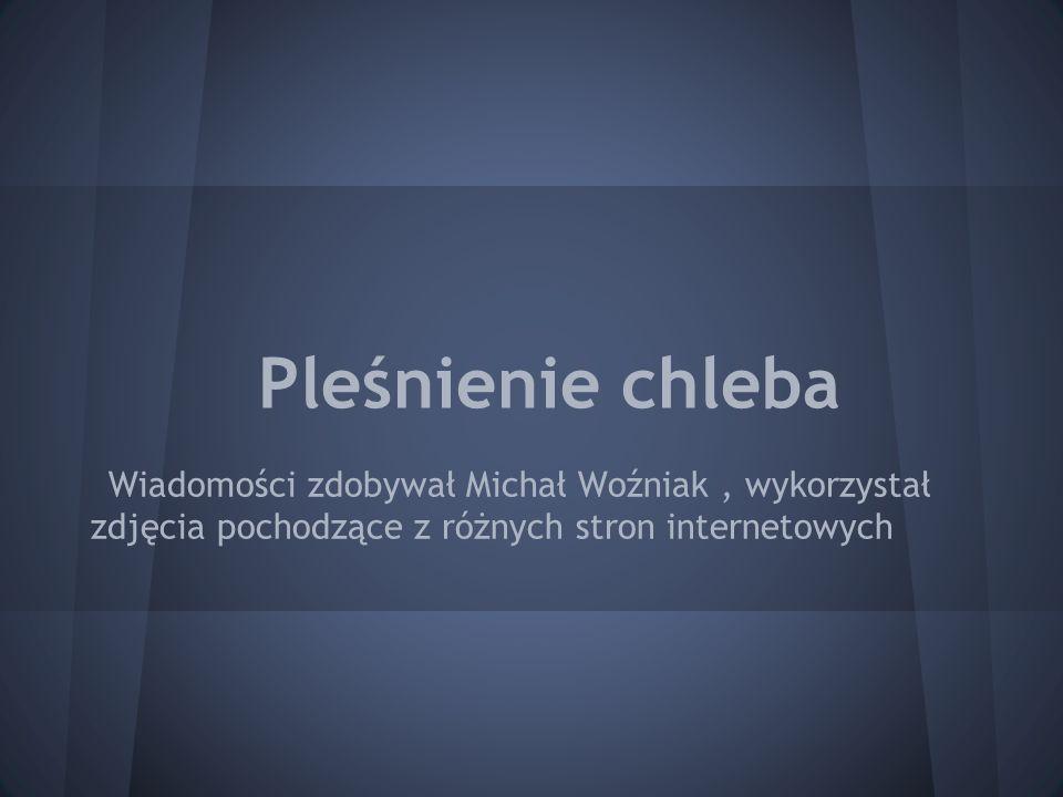 Pleśnienie chleba Wiadomości zdobywał Michał Woźniak , wykorzystał zdjęcia pochodzące z różnych stron internetowych.