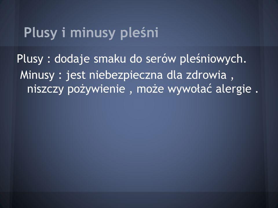 Plusy i minusy pleśni Plusy : dodaje smaku do serów pleśniowych.