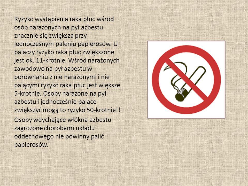 Ryzyko wystąpienia raka płuc wśród osób narażonych na pył azbestu znacznie się zwiększa przy jednoczesnym paleniu papierosów. U palaczy ryzyko raka płuc zwiększone jest ok. 11-krotnie. Wśród narażonych zawodowo na pył azbestu w porównaniu z nie narażonymi i nie palącymi ryzyko raka płuc jest większe 5-krotnie. Osoby narażone na pył azbestu i jednocześnie palące zwiększyć mogą to ryzyko 50-krotnie!!