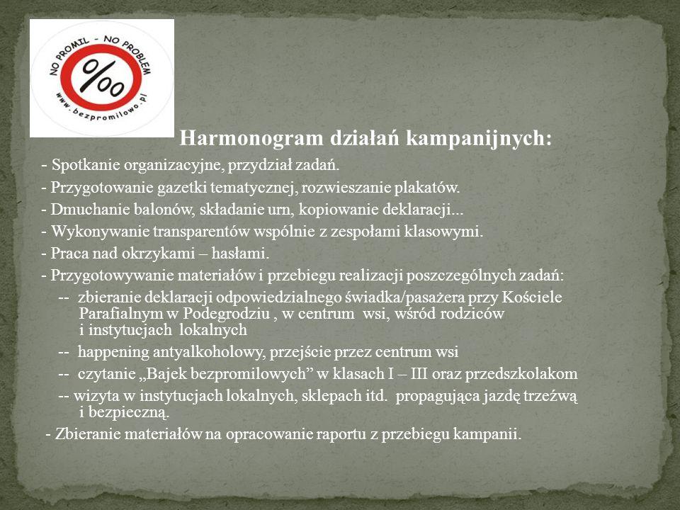 Harmonogram działań kampanijnych: