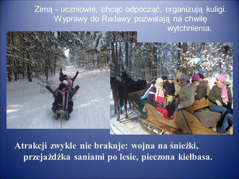 Zimą - uczniowie, chcąc odpocząć, organizują kuligi