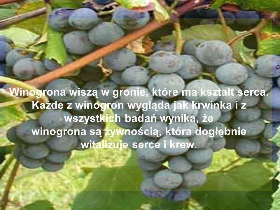 Winogrona wiszą w gronie, które ma kształt serca