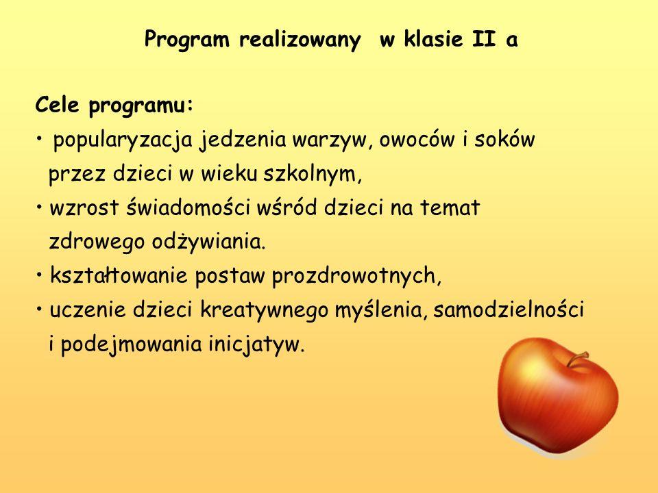 Program realizowany w klasie II a
