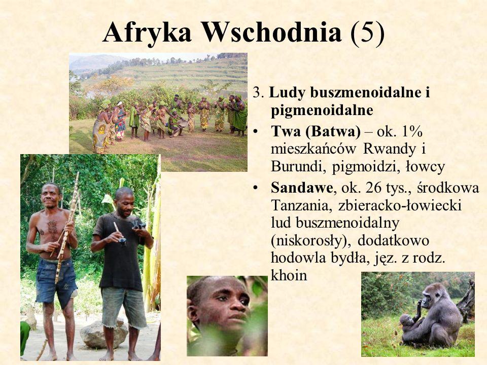 Afryka Wschodnia (5) 3. Ludy buszmenoidalne i pigmenoidalne