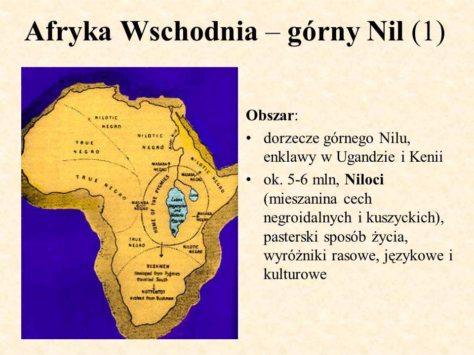 Afryka Wschodnia – górny Nil (1)