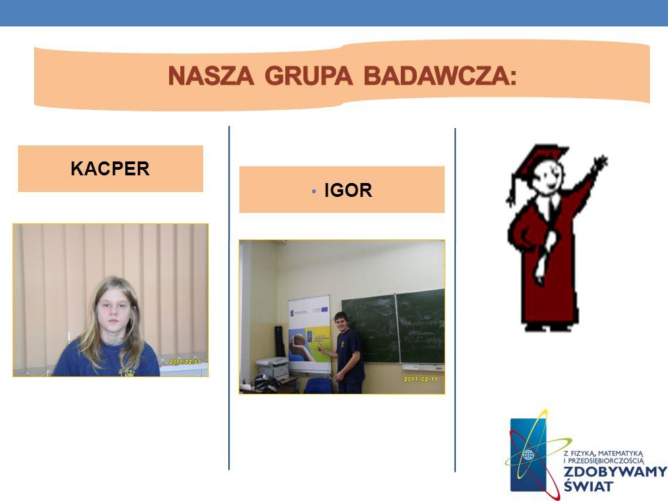 Nasza grupa badawcza: KACPER IGOR