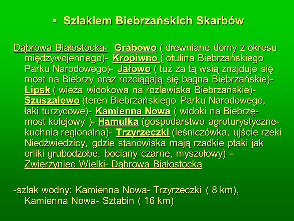 Szlakiem Biebrzańskich Skarbów