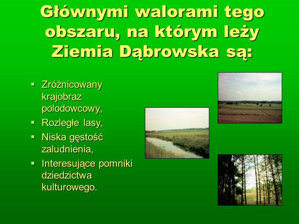Głównymi walorami tego obszaru, na którym leży Ziemia Dąbrowska są: