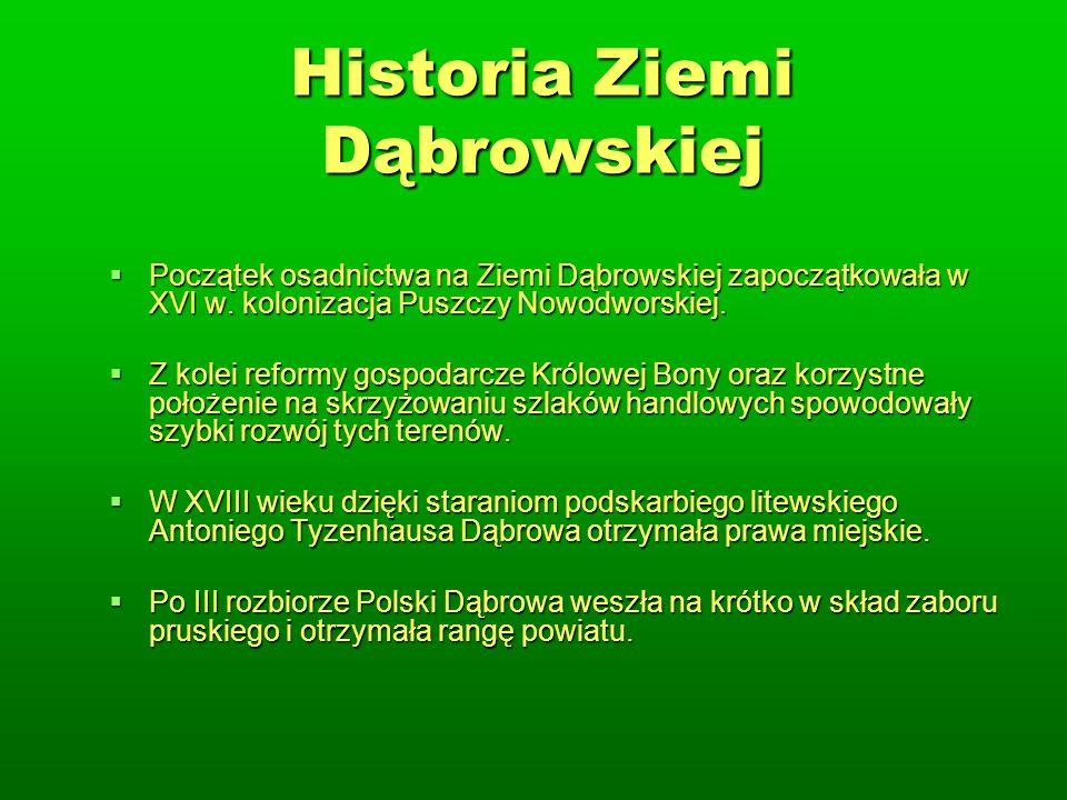 Historia Ziemi Dąbrowskiej