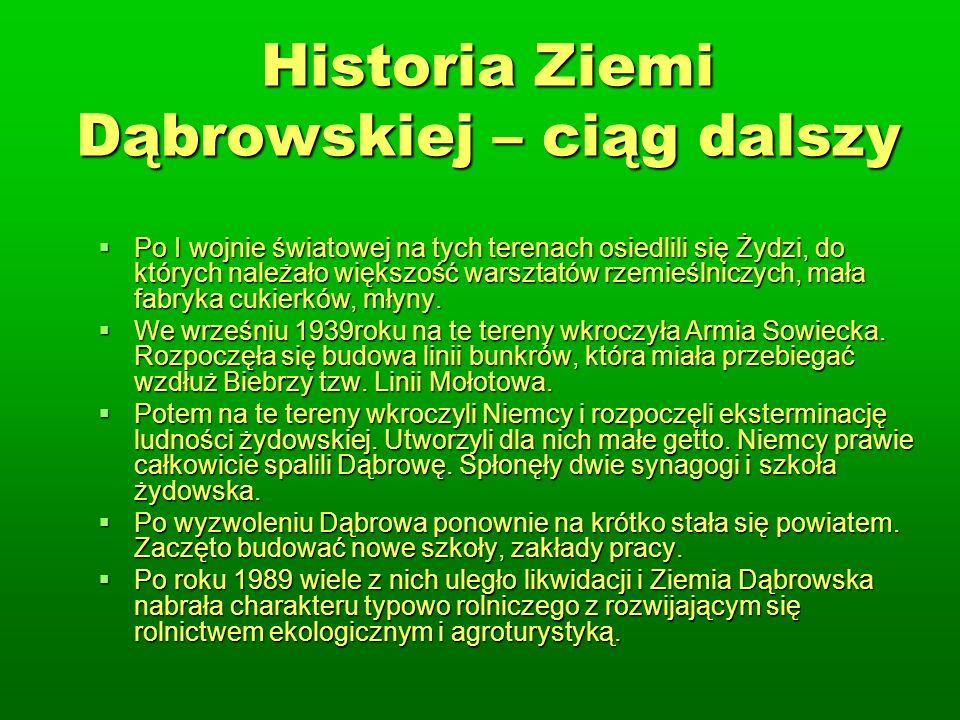 Historia Ziemi Dąbrowskiej – ciąg dalszy