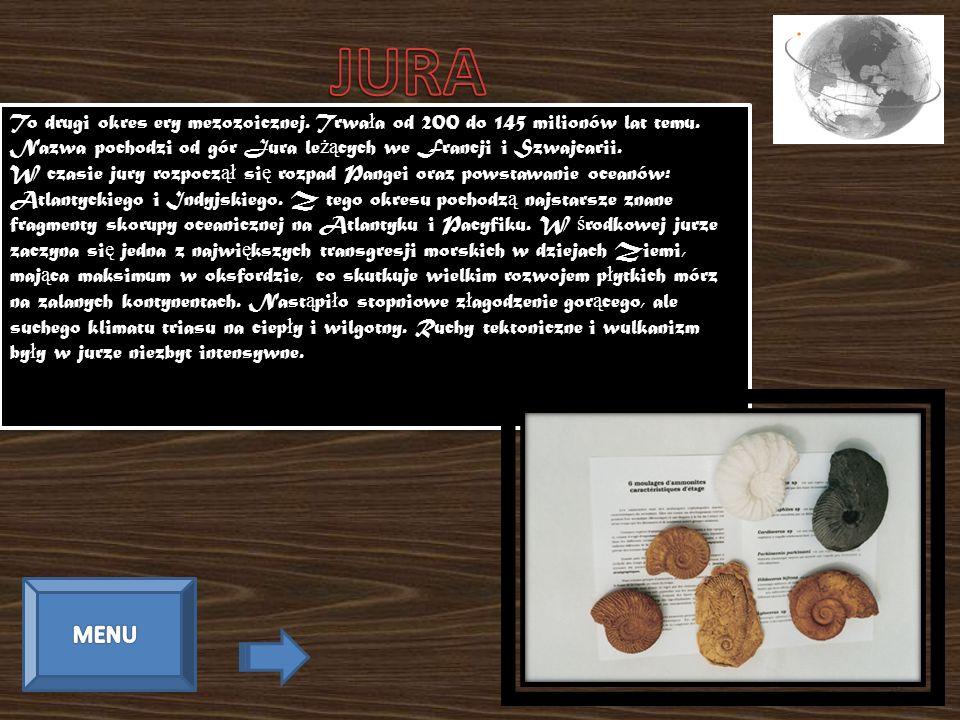 JURA To drugi okres ery mezozoicznej. Trwała od 200 do 145 milionów lat temu. Nazwa pochodzi od gór Jura leżących we Francji i Szwajcarii.