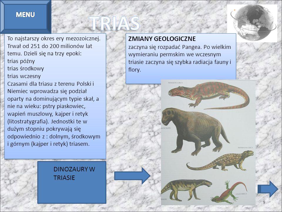 TRIAS MENU ZMIANY GEOLOGICZNE DINOZAURY W TRIASIE