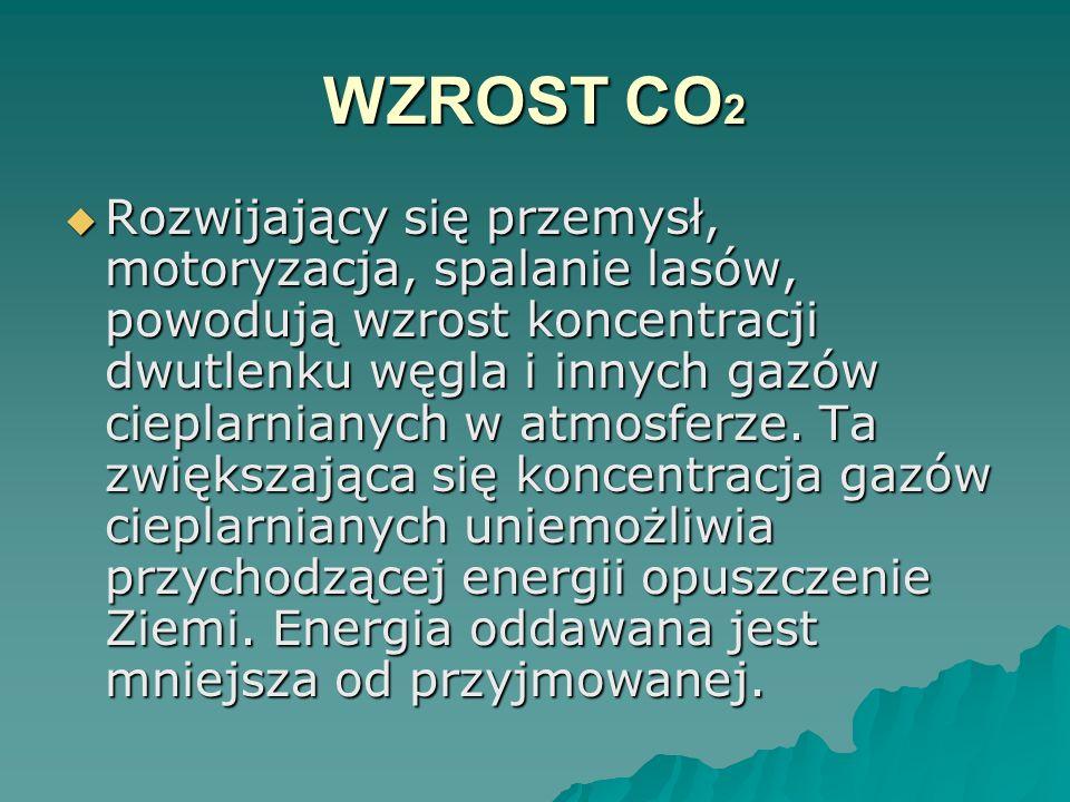WZROST CO2