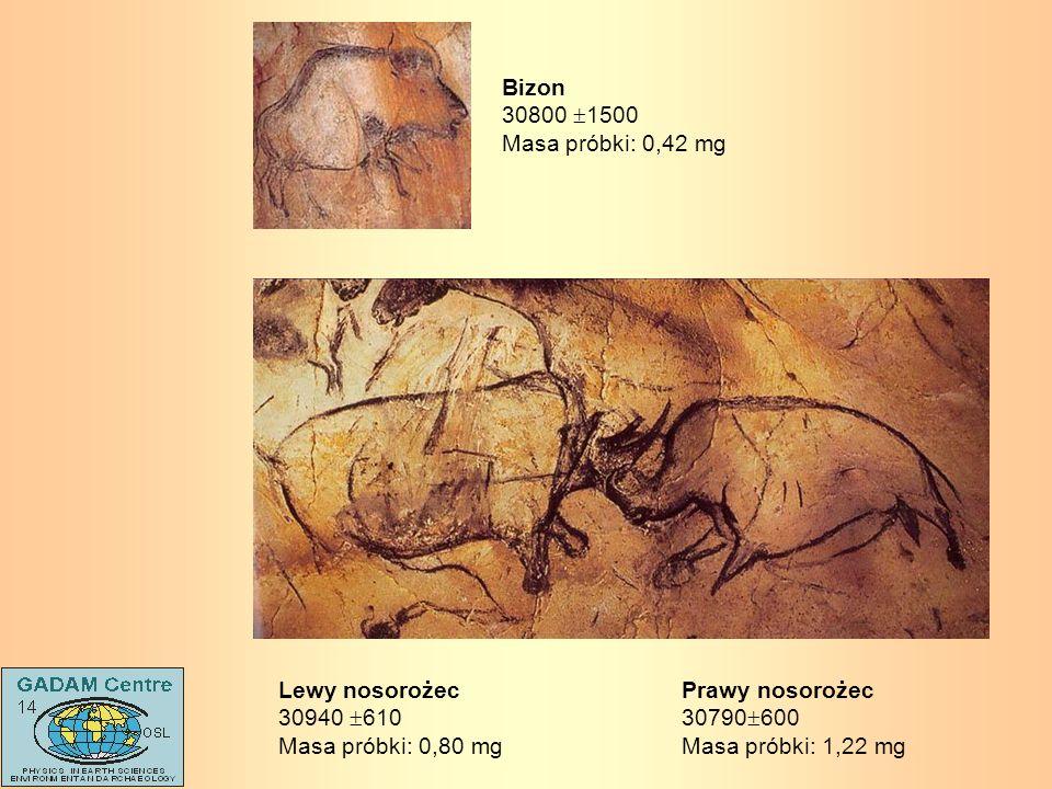 Prawy nosorożec30790600. Masa próbki: 1,22 mg. Lewy nosorożec. 30940 610. Masa próbki: 0,80 mg. Bizon.