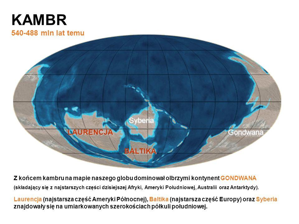 KAMBR 540-488 mln lat temu Syberia LAURENCJA Gondwana BALTIKA