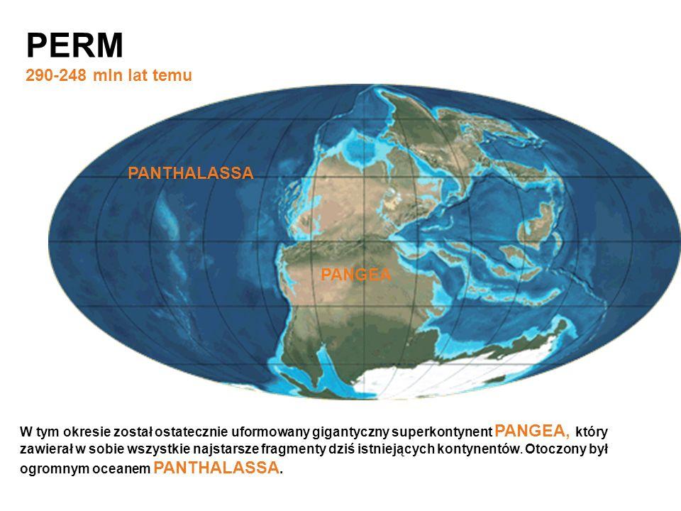 PERM 290-248 mln lat temu PANTHALASSA PANGEA