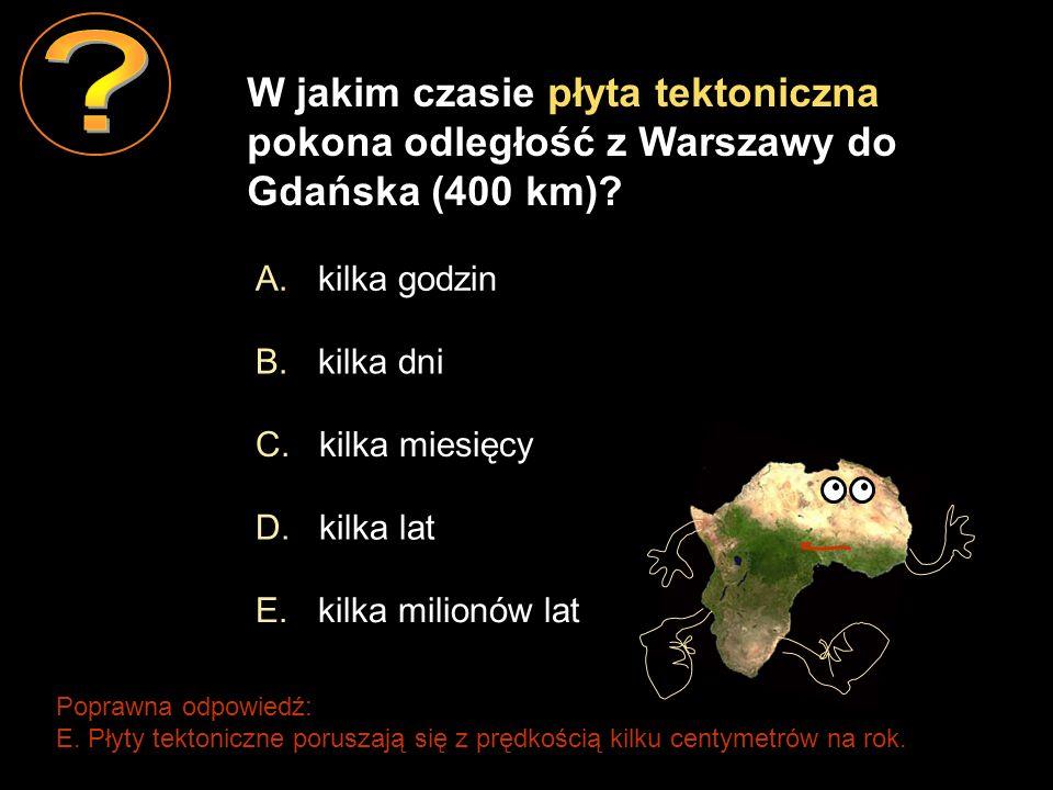 W jakim czasie płyta tektoniczna pokona odległość z Warszawy do Gdańska (400 km) A. kilka godzin.