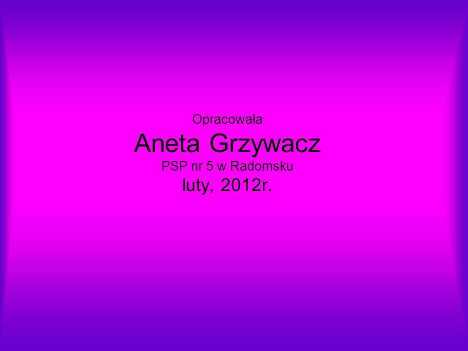 Opracowała Aneta Grzywacz PSP nr 5 w Radomsku luty, 2012r.