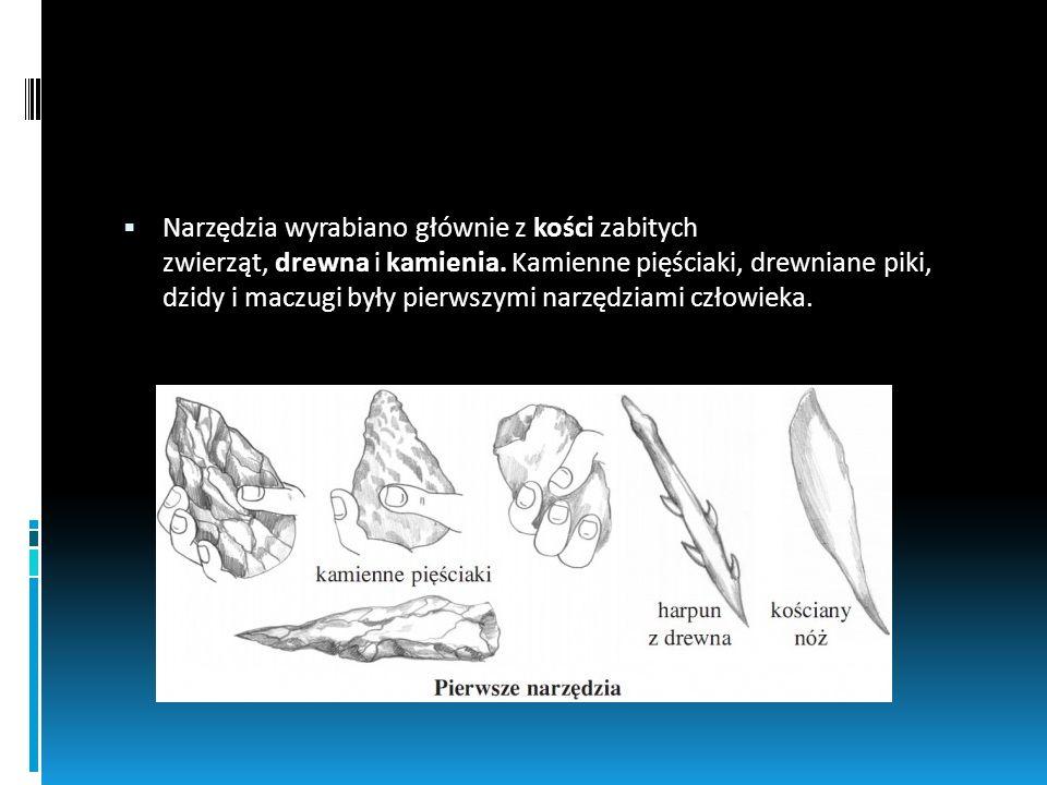 Narzędzia wyrabiano głównie z kości zabitych zwierząt, drewna i kamienia. Kamienne pięściaki, drewniane piki, dzidy i maczugi były pierwszymi narzędziami człowieka.