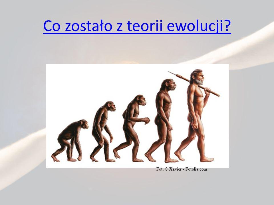 Co zostało z teorii ewolucji