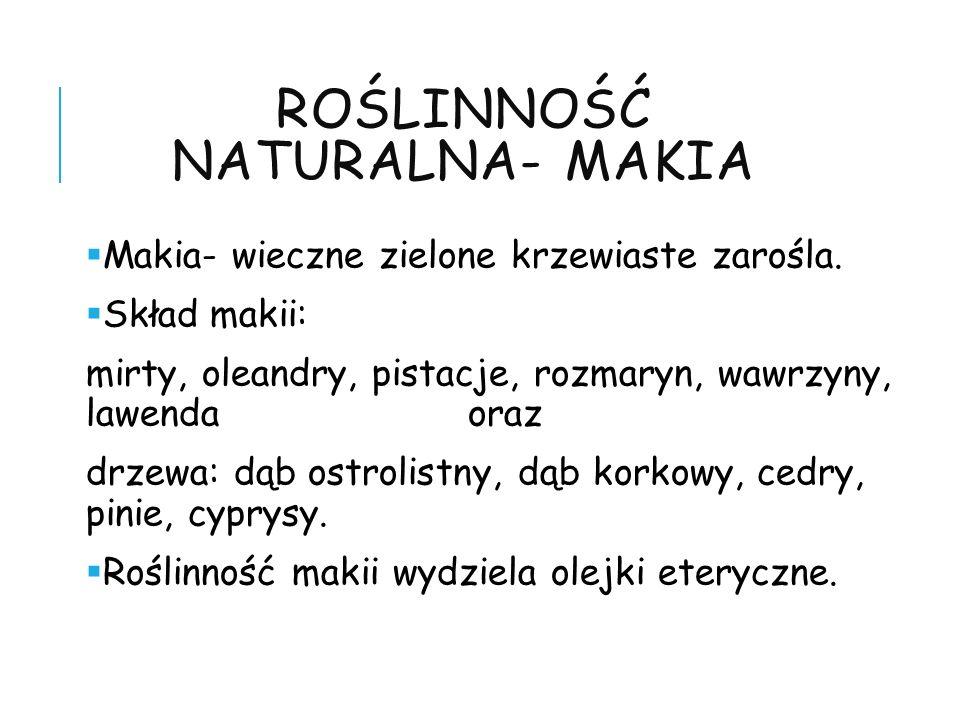 Roślinność naturalna- makia