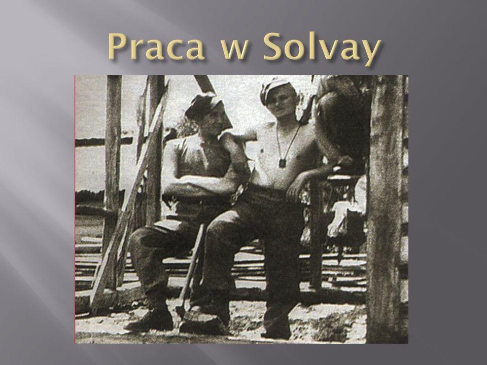 Praca w Solvay